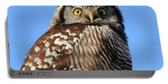 Portable Battery Charger featuring the photograph Northern Hawk-owl by Debbie Stahre