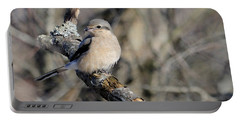 Northern Shrike Portable Battery Charger