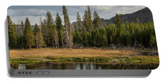 Portable Battery Charger featuring the photograph On The Banks Of The Madison River by Lon Dittrick