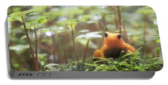 Portable Battery Charger featuring the photograph Orange Frog. by Anjo Ten Kate