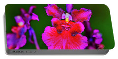 Orchid Study Three Portable Battery Charger