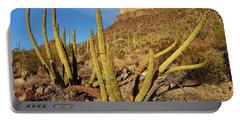 Organ Pipe Cactus, Ajo Mts, Organ Pipe Portable Battery Charger
