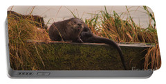 Otter On The Boat Ramp Portable Battery Charger