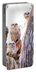 Owl Trio Standing Guard Portable Battery Charger