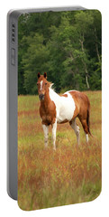 Paint Horse In Pasture Portable Battery Charger