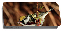 Perky Little Warbler Portable Battery Charger