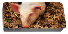 Piglet Portable Battery Charger