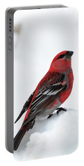 Pine Grosbeak In The Snow Portable Battery Charger