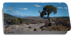 Pinyon Pine With North Rim In Background Black Canyon Of The Gunnison Portable Battery Charger