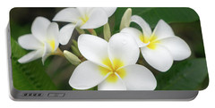 Pleasing Plumeria Portable Battery Charger