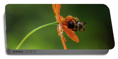 Portable Battery Charger featuring the photograph Pollinating The Cosmos by Dale Kincaid