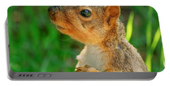Pondering Squirrel Portable Battery Charger