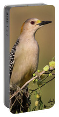Portrait Of A Golden-fronted Woodpecker Portable Battery Charger