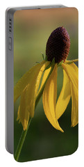 Portable Battery Charger featuring the photograph Prairie Coneflower by Dale Kincaid