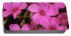 Pretty Pink Phlox Portable Battery Charger