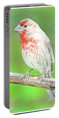 Purple Finch, Animal Portrait Portable Battery Charger