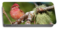 Purple Finch Portable Battery Charger