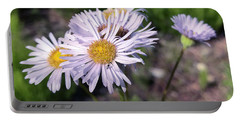 Purple Fleabane 5 Portable Battery Charger