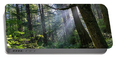Portable Battery Charger featuring the photograph Rain Forest At La Push by Ed Clark