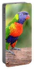 Rainbow Lorikeet Portable Battery Charger