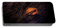 Ray In The Grass Flats Portable Battery Charger
