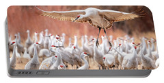 Ready Or Not, Here I Come -- Sandhill Cranes Portable Battery Charger