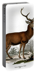 Red Deer Circa 19th Century Colored Engraving Portable Battery Charger