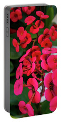 Red Flowers In Bloom Portable Battery Charger