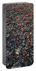 Red Flowers Over Stones Portable Battery Charger