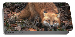 Red Fox Dmam0049 Portable Battery Charger