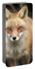 Red Fox Stare Portable Battery Charger