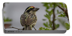 Red-fronted Barbet Portable Battery Charger