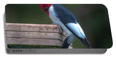 Red-headed Woodpecker Perched Portable Battery Charger
