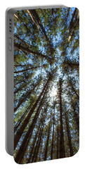 Red Pines 1 Portable Battery Charger