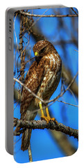 Red Shouldered Hawk Portable Battery Charger