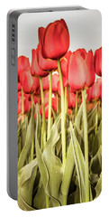 Portable Battery Charger featuring the photograph Red Tulip Field In Portrait Format. by Anjo Ten Kate