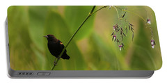 Red-winged Blackbird On Alligator Flag Portable Battery Charger