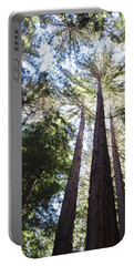 Redwoods, Blue Sky Portable Battery Charger
