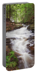 Rickett's Glen Waterfall II Portable Battery Charger