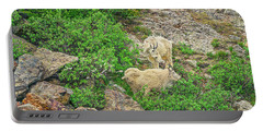 Roaming Mountain Goats In Colorado's Hinterland Portable Battery Charger