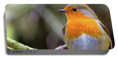 Robin. On Guard Portable Battery Charger