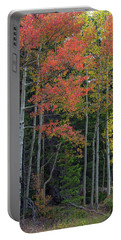 Portable Battery Charger featuring the photograph Rocky Mountain Forest Reds by James BO Insogna