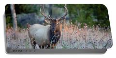 Rocky Mountain Wildlife Bull Elk Sunrise Portable Battery Charger