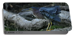 Ruffled Green Heron Portable Battery Charger