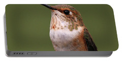 Portable Battery Charger featuring the photograph Rufous Hummingbird by Sue Harper