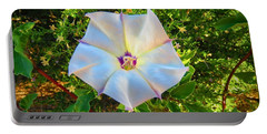 Portable Battery Charger featuring the photograph Sacred Datura In The Golden Hour by Judy Kennedy