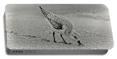 Sanderling Foraging For Food Portable Battery Charger