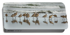 Sandpipers Piping Portable Battery Charger