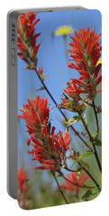 Scarlet Indian Paintbrush At Mount St. Helens National Volcanic  Portable Battery Charger