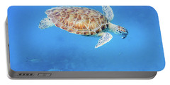 Sea Turtle And Fish Swimming Portable Battery Charger